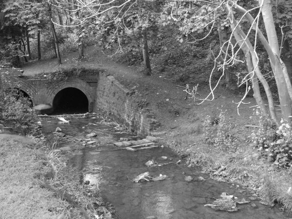 The tunnel leading the river Cherwell through the railway bank