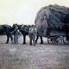 Thumbnail: Frank Ward and Tom Wise haymaking on Mr Iven's Farm circa 1940